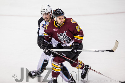 Admirals v Wolves AHL_20130416-172