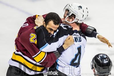 Admirals v Wolves AHL_20130416-107