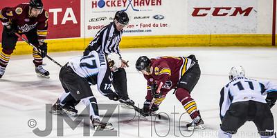 Admirals v Wolves AHL_20130416-132