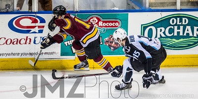 Admirals v Wolves AHL_20130416-91