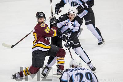 Admirals v Wolves AHL_20130416-4
