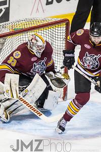 Admirals v Wolves AHL_20130416-10