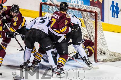 Admirals v Wolves AHL_20130416-149