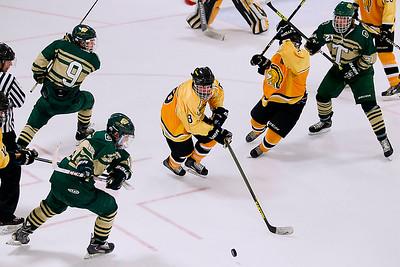 Hockey: TC West vs. TC Central - Jan. 28, 2015