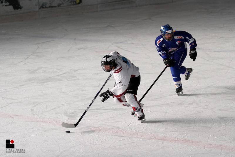 Match Hirondelles - ZSC Lions, 12.01.2013