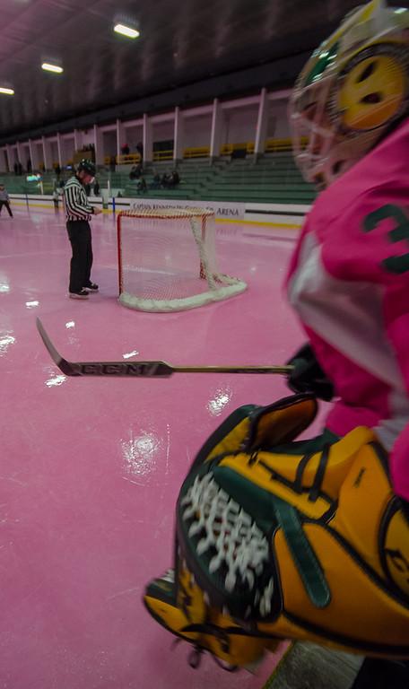 160206 FSU Pink Hockey Game