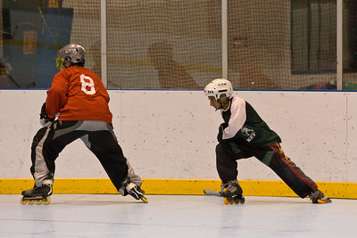2008 Roller Hockey Playoffs