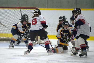 2009 Carleton Place Cyclones Novice House