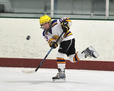 2010 Youth Hockey