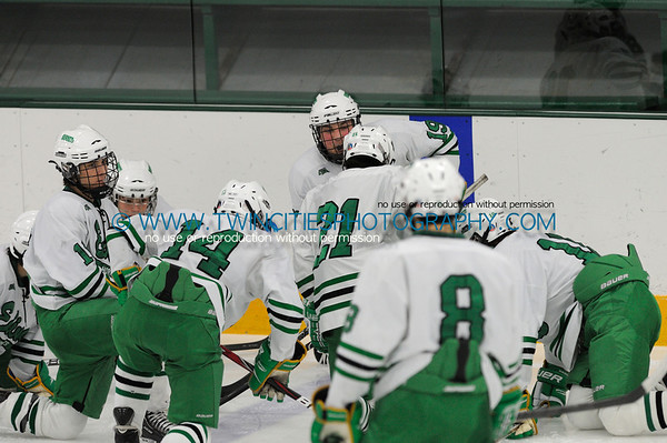 # Edina Hornets vs. Centennial Cougars Junior Varsity HockeyOrder a photo print of any photo by clicking the 'Buy' link above.   TIP: Click the photo above to display a larger size