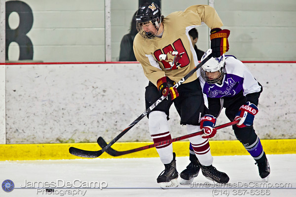 Bishop Waterson's Denis McPhillips (13) fends off DeSales' Joe Gray (8) in the first period of play at the Easton Chiller Jan. 28, 2012. (© James D. DeCamp | http://www.JamesDeCamp.com | 614-367-6366)