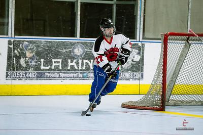 20141119-D9-Hockey-108