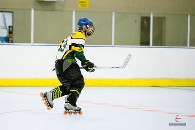 20141119-D9-Hockey-105