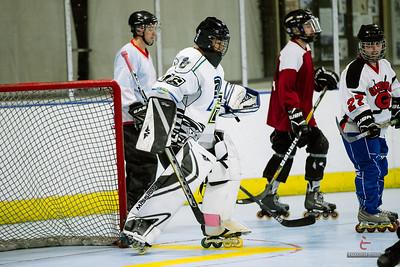 20141119-D9-Hockey-123
