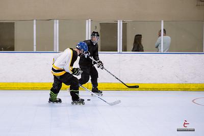20140305-D9-hockey-championship-101