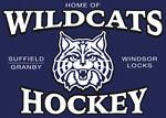 WildcatsBanner