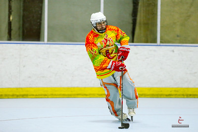 20150113-Caliente-hockey-119