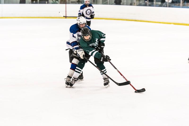 Wildcats Hockey  2