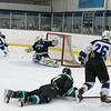 Wildcats Hockey  2-27-16_DSC6746