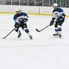Wildcats Hockey  2-27-16_DSC6541