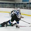 Wildcats Hockey  2-27-16_DSC6745