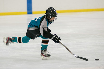 Twin Rinks Sharks @ Pleasant Prairie Patriots 3