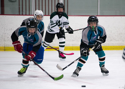 Twin Rinks Sharks vs. Lake Forest Winter Club