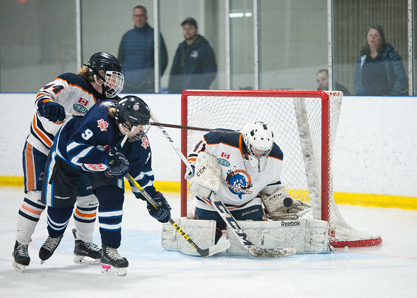2017-2018 Burlington Baracudas Junior Girls Hockey