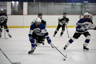 Wildcats JV Hockey 0179