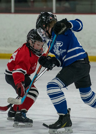 2019 Squirt Hockey Playoffs Red Sharks vs. Blue Patriots