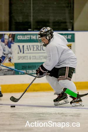 Adam Pardy Defensive Camp Newfoundland Blizzard Hockey July 8 - 12, 2009