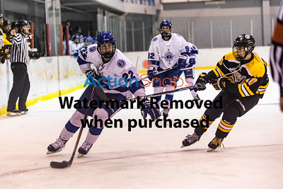 Blizzard vs TriPen Hockey at Mount Pearl Glacier 1