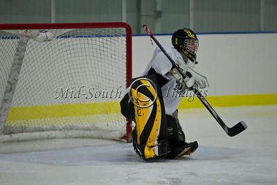 FW Hockey 2-7-20_0133