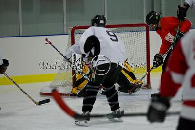 FW Hockey 2-7-20_0137