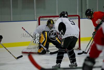FW Hockey 2-7-20_0136