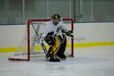 FW Hockey 2-7-20_0138
