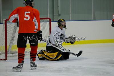 FW Hockey 2-7-20_0139