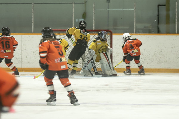 Med Hat Stoon Aces-0314