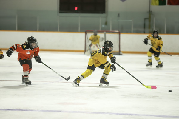 Med Hat Stoon Aces-0254