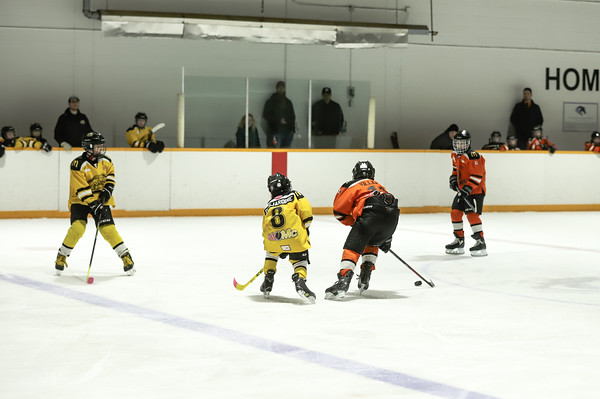 Med Hat Stoon Aces-0349