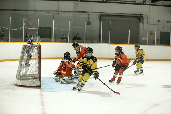Med Hat Stoon Aces-0289