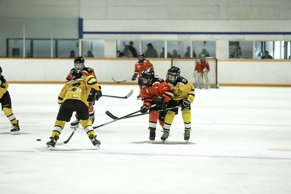 Med Hat Stoon Aces-0402