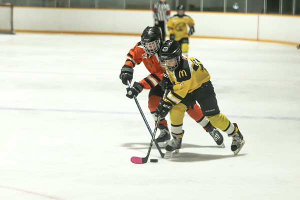 Med Hat Stoon Aces-0270