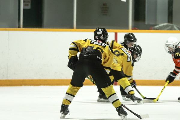 Med Hat Stoon Aces-0331