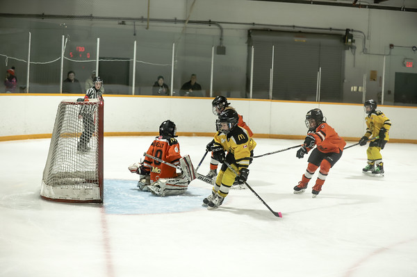 Med Hat Stoon Aces-0288