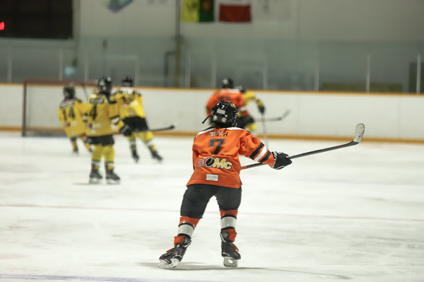 Med Hat Stoon Aces-0214