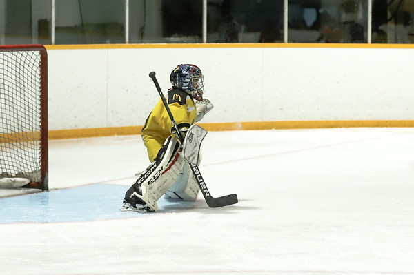 Med Hat Stoon Aces-0322