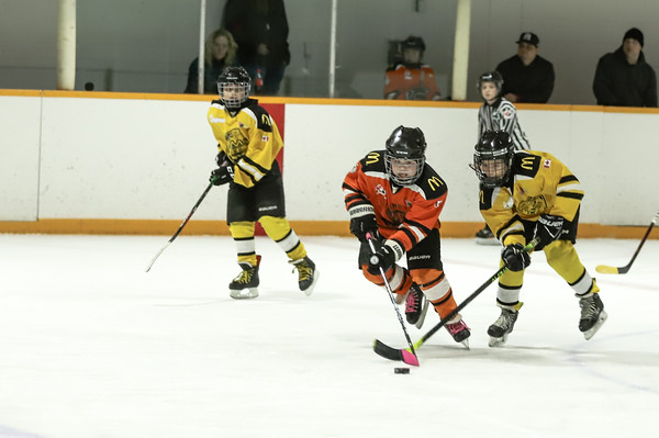 Med Hat Stoon Aces-0337