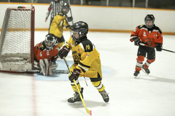 Med Hat Stoon Aces-0259