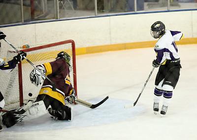 Avon vs. Avon Lake hockey